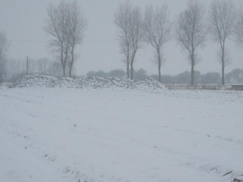 la neige est-elle arrivée chez vous ?  - Page 10 Bett_010
