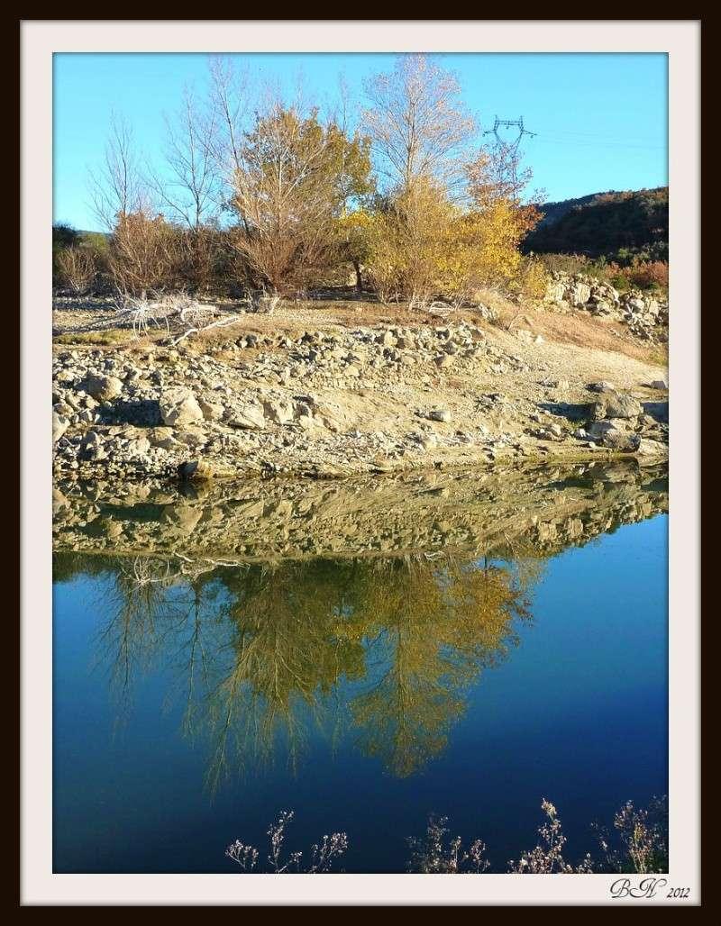 Tel un miroir dans l'eau  P1350713