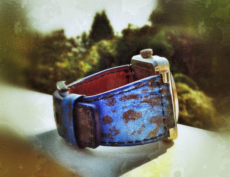 Feu de vos bracelets Bell&Ross - Tome IV Phsoto10