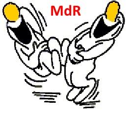 MAS 36  Tomes 1 & 2 Mdr11