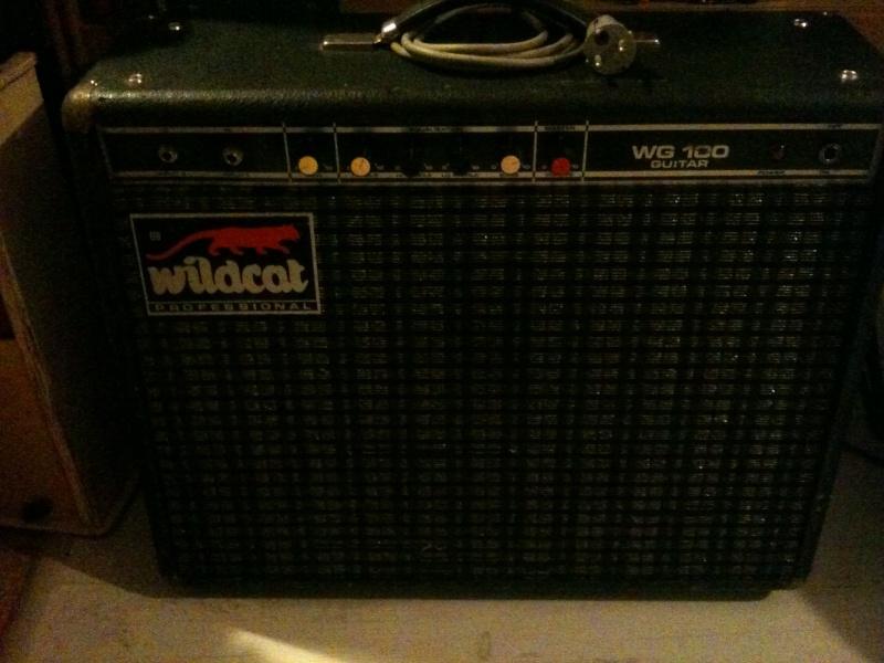 Ampli Wildcat WG100 Img_1610