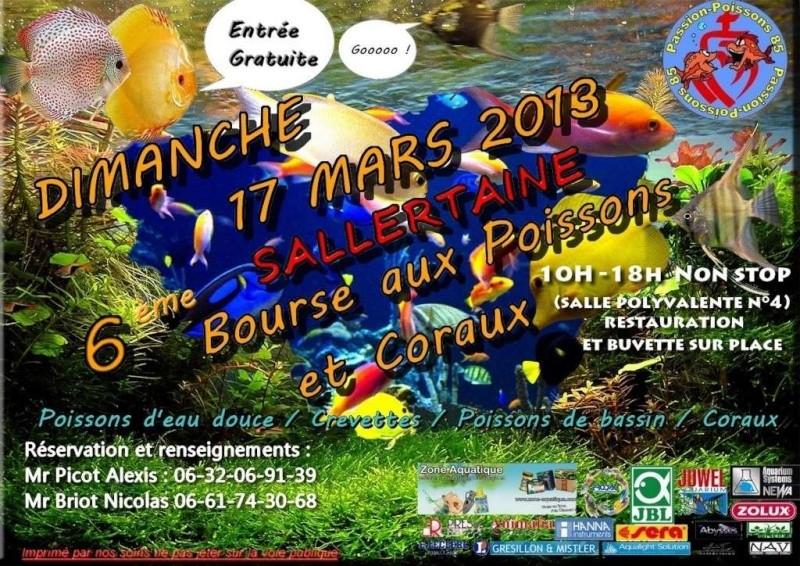 17 Mars 2013 - 6ème Bourse Aquario/Terrario à Sallertaine 85 Sans_m10
