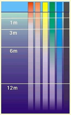 nylon transparent 08095210