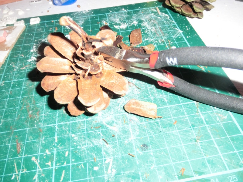 Jungle Tree Cimg2413