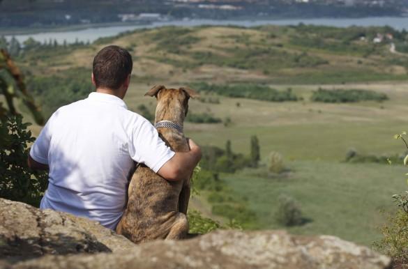 Merci mon chien ! En campagne pour notre meilleur ami Compli10