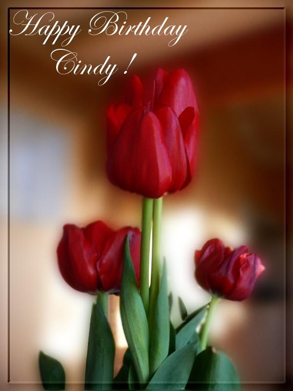 Happy Birthday CindiGirl! 60138010