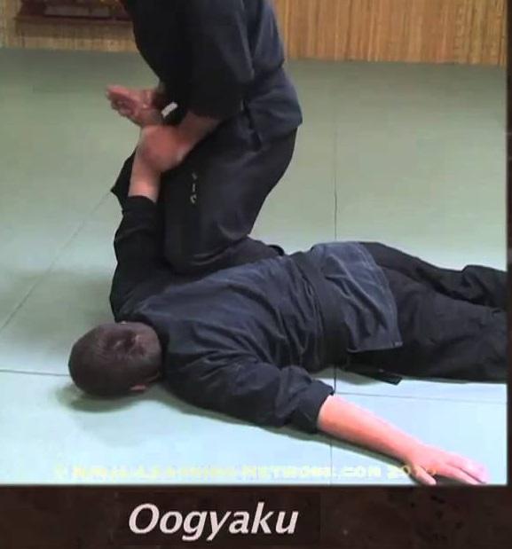 [act10] (N2) Feeding training Oogyak10