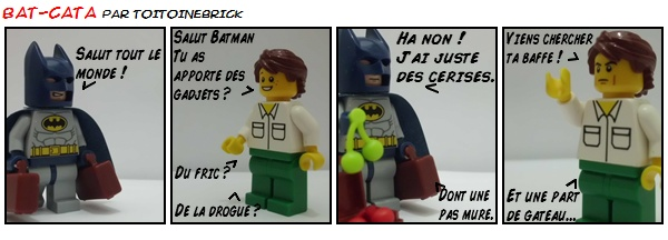 Le monde de ToitoineBrick - Page 5 Bd_bat10