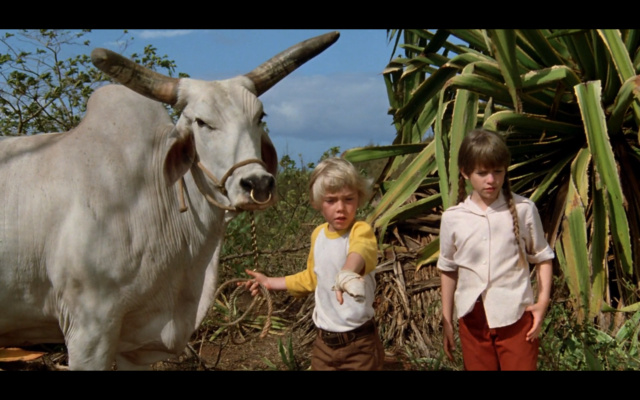Le Dernier Vol de l'Arche de Noé [Disney - 1980]  Le_der44
