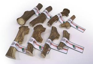 Le bois de cerf Index10