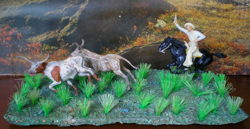 Meine Longhorn-Herde wächst - Seite 2 118i5b11