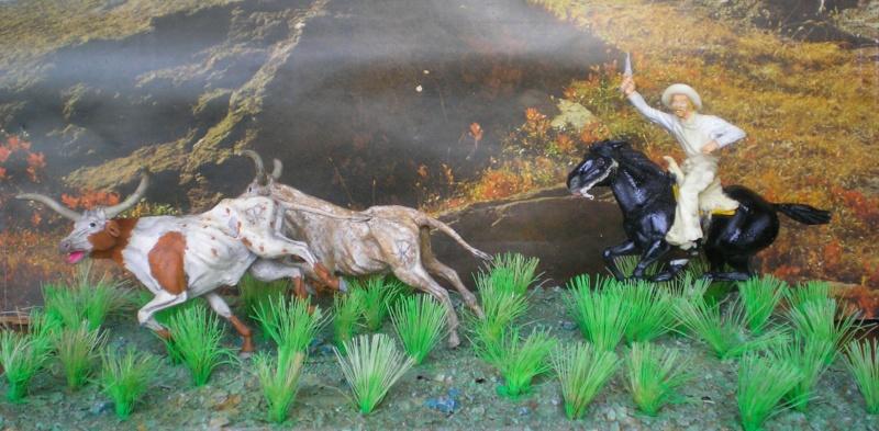 Meine Longhorn-Herde wächst - Seite 2 118i5b12