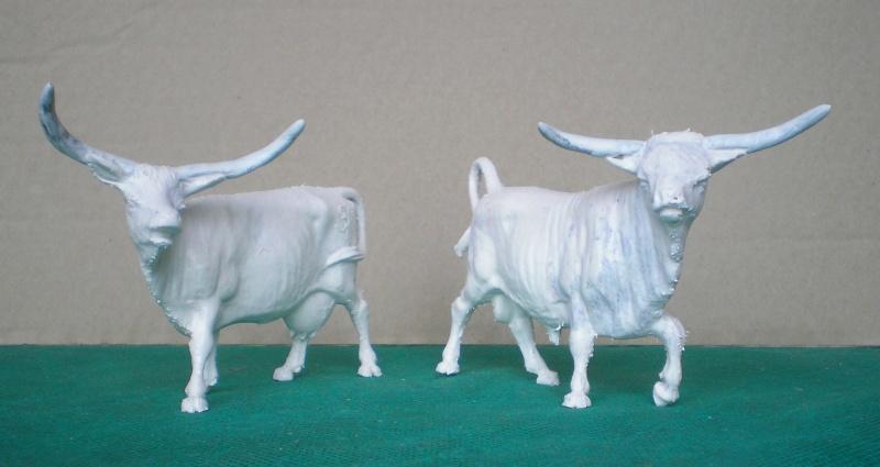 Meine Longhorn-Herde wächst - Seite 2 140b1a10