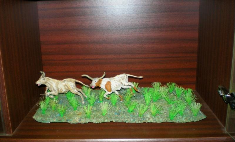 Meine Longhorn-Herde wächst - Seite 2 20130110
