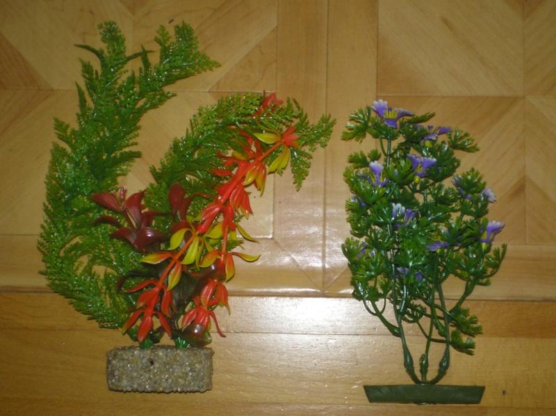 Preiswertes Material zur Pflanzengestaltung Pflanz11