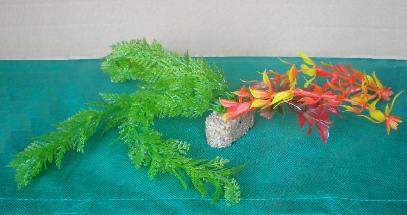 Preiswertes Material zur Pflanzengestaltung Pflanz12