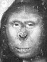 Bigfoot - Page 2 Zana_310
