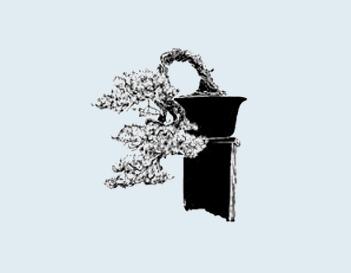 Stili Bonsai (teminologia Jap) Kengai11
