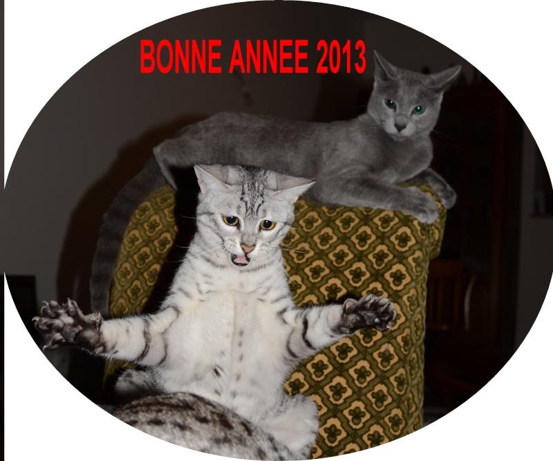 REVEILLON JOUR DE L'AN 201310