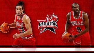 Le Portail Chicago Bulls Noah_d10