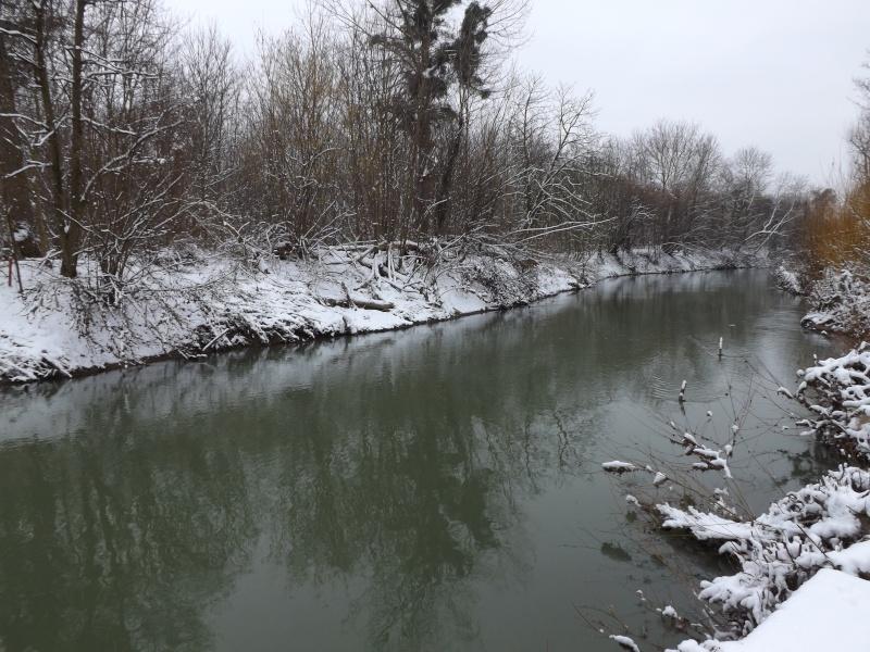 Sortie sous la neige Dscf0113