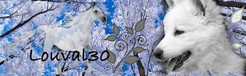 Commande pour Shyba by louval30 Blanc611