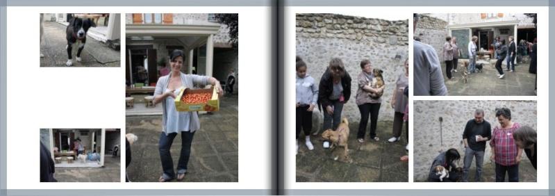 LIVRE RENCONTRE 2012 et LIVRE ADOPTES 2012 00310