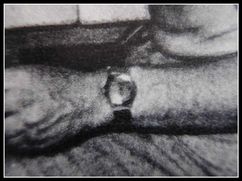 """quelles sont ces montres de l'épopée """"Cousteau"""".. P1260023"""
