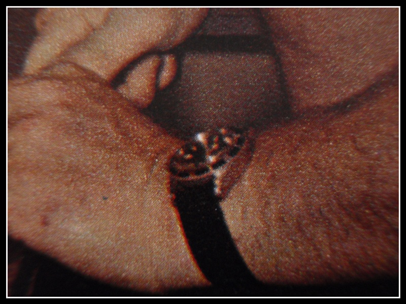 """quelles sont ces montres de l'épopée """"Cousteau"""".. P1260027"""