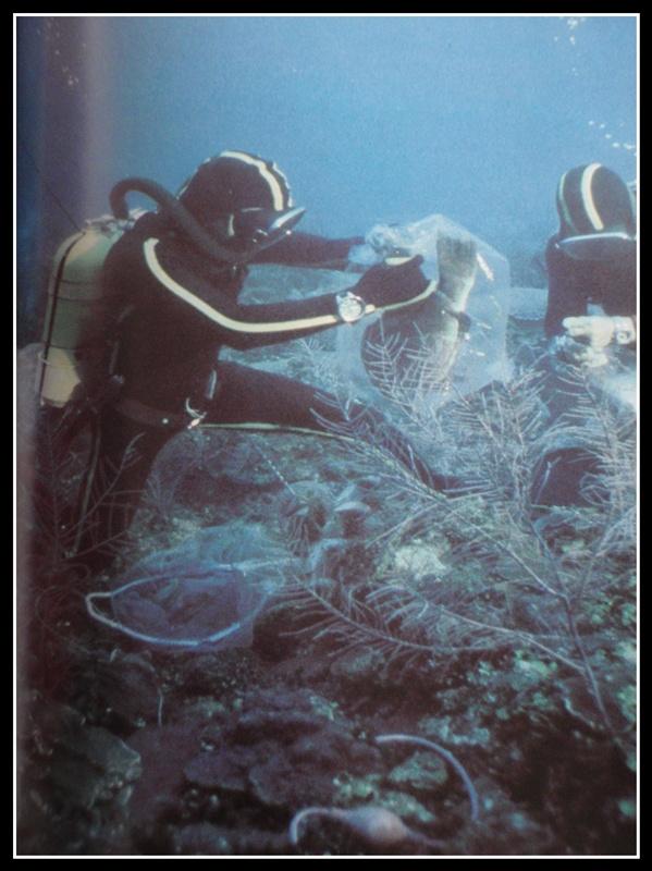 """quelles sont ces montres de l'épopée """"Cousteau"""".. P1260040"""
