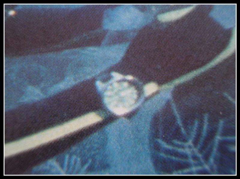 """quelles sont ces montres de l'épopée """"Cousteau"""".. P1260041"""