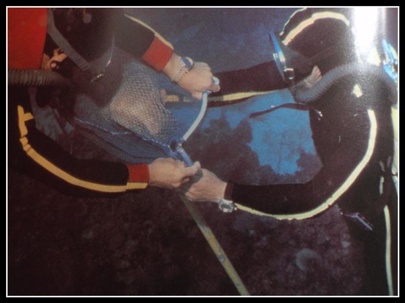 """quelles sont ces montres de l'épopée """"Cousteau"""".. P1260043"""