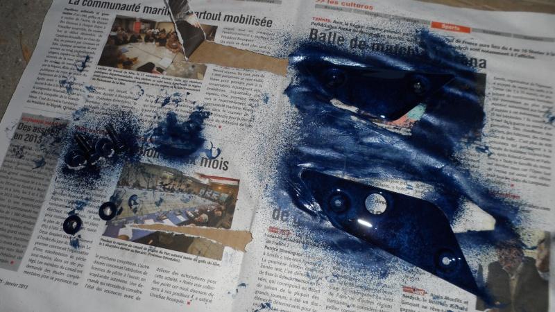 Peinture, modification couleures des platines! Sam_1448