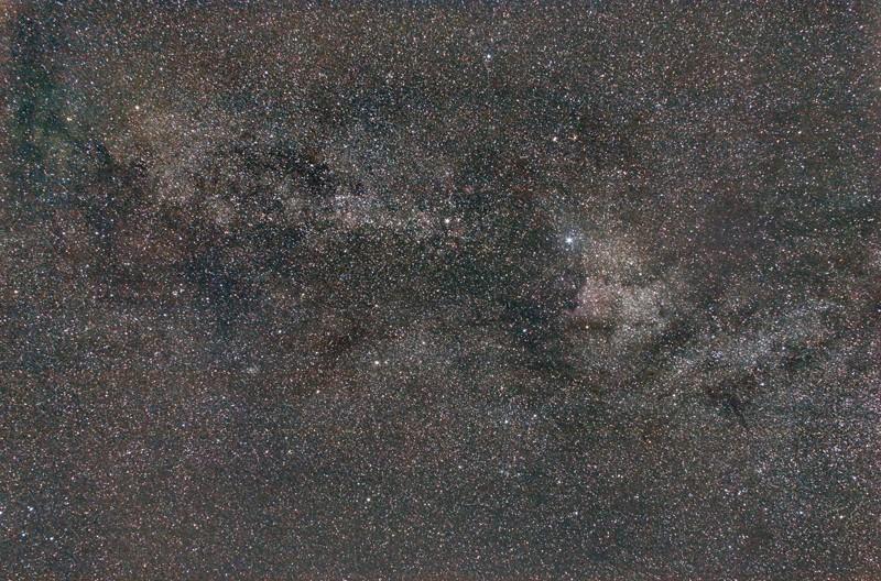 Région du Cygne Cygne-10