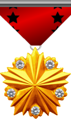 Medal of Honor: This medal is awarded to a member of the Silver Arrows for its honorable behavior in the execution of his/her functions.
