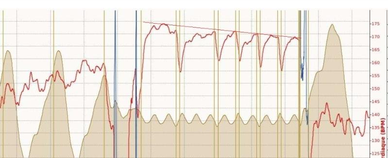 Ricorée ---) [27 janvier 2013] prépa 10 km de Betton - Page 3 Serie_10