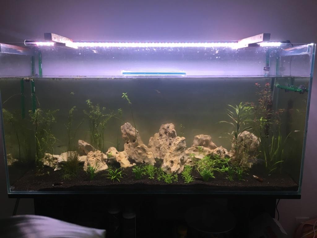 Rampe LED Daytime Img_7410