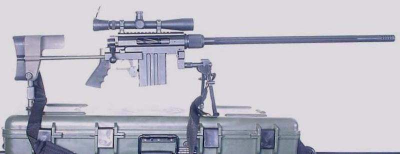 صور انواع الاسلحة 338lap10
