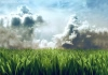 صور من حضن الطبيعة Lawn_i10