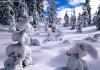 مــــنــــاظــر الـطــبــيــعــى Winter10