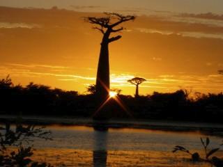 les plus belle photos de couchers de soleil - Page 8 27017