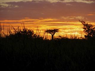 les plus belle photos de couchers de soleil - Page 8 27310