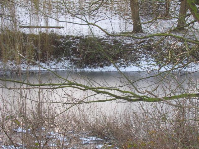 ils ont pollué, mon lac.......... - Page 4 Neige_17