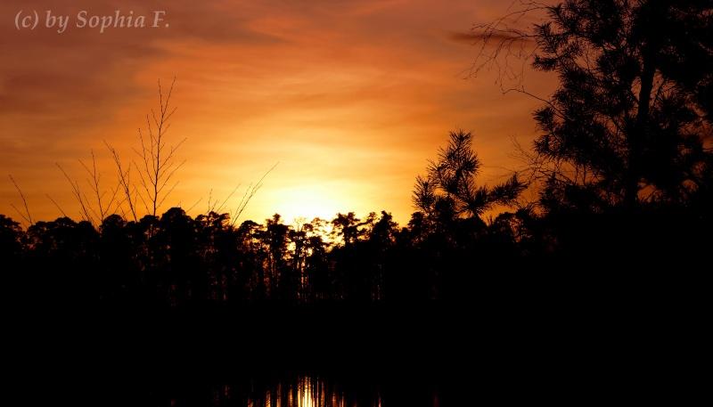 Sonnenuntergang Dsc00510