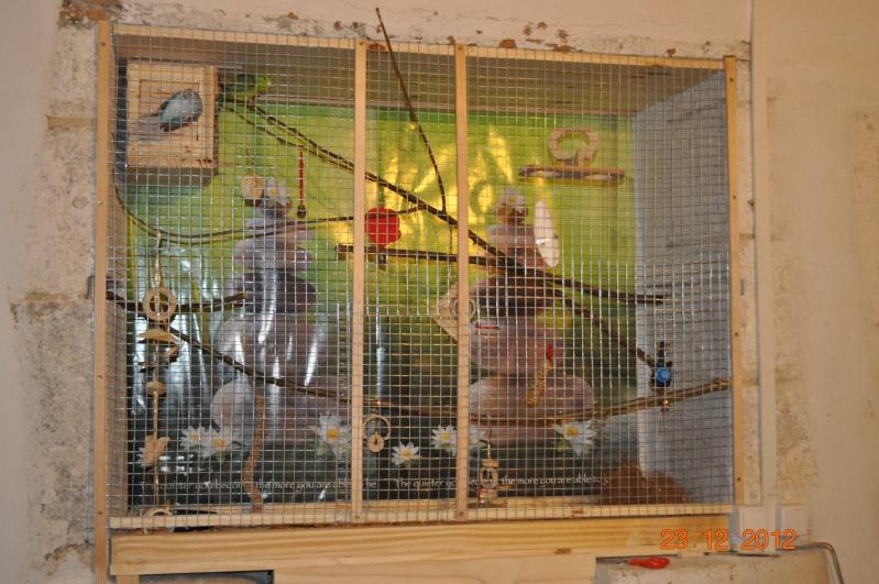 La cage de mes catherines Dsc_0713