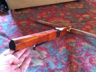 crossbow model Img_0316