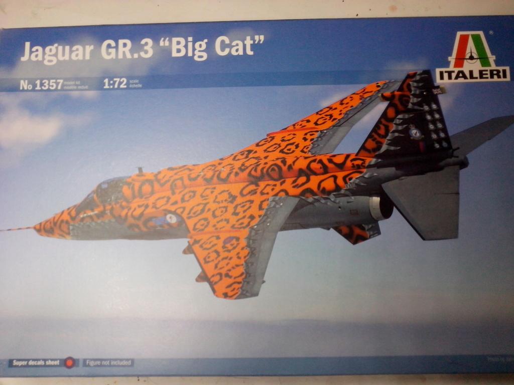 """JAGUAR GR.3 """"Big Cat"""" (Italeri) 1/72 Img_2234"""