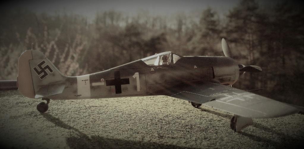 FW-190 A4 (ZVEZDA) - Page 3 Img_2382
