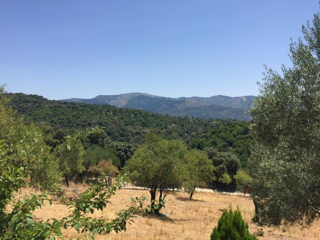 Du côté d'Alpandeire, Andalousie toujours Image10