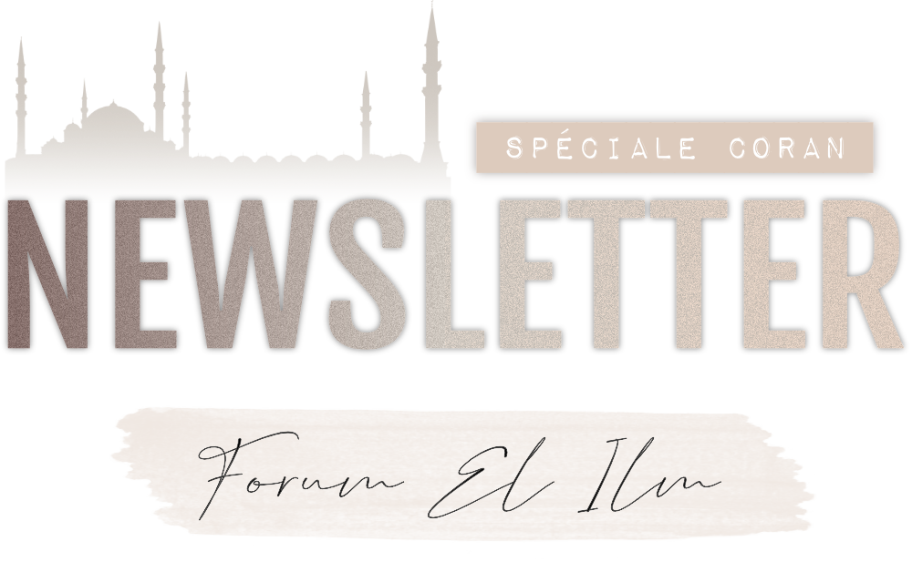 Newsletters  512